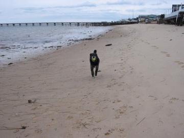 Beach Feb 2006.jpg