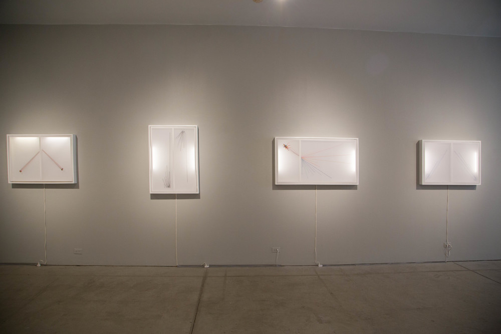 Installation view of large lightboxes