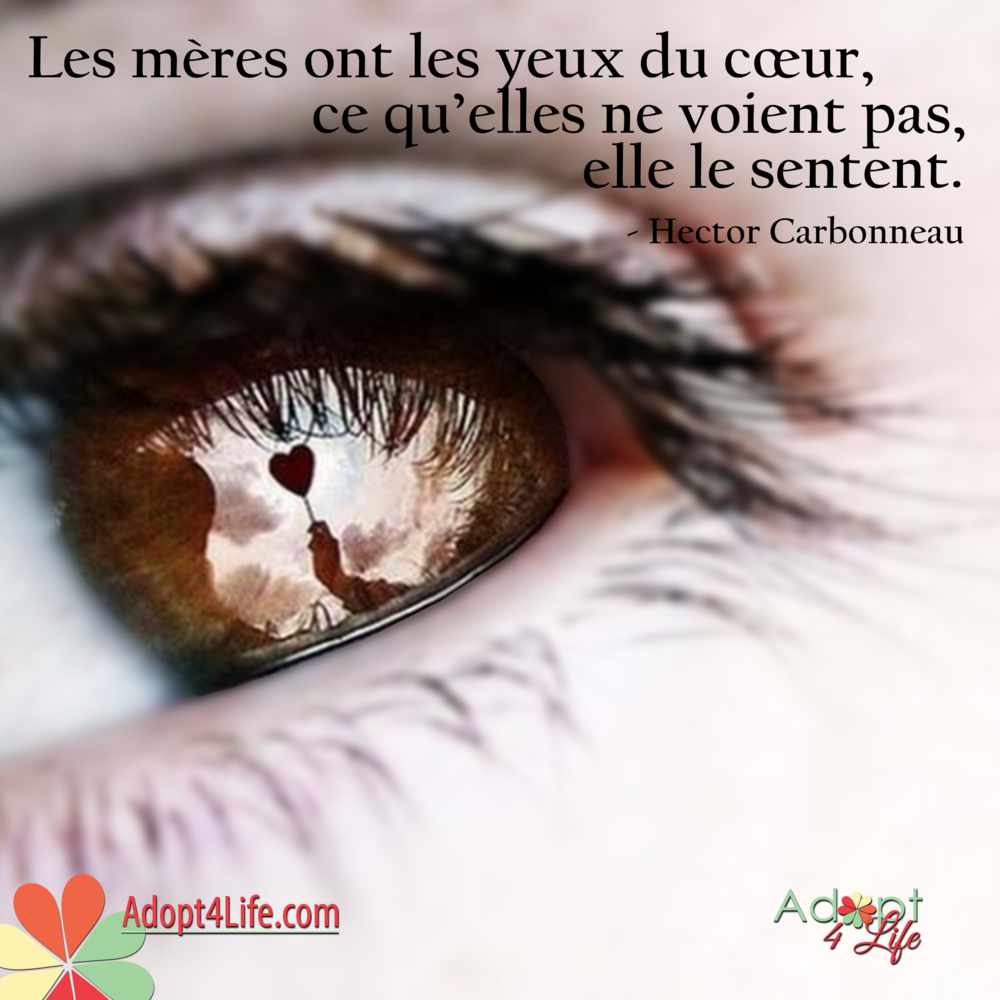 Facebook_AdoptionQuote_French_007_Dec2014_png.png