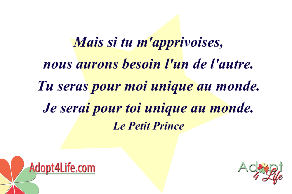 Facebook_AdoptionQuote_French_013_Dec2014_png.png