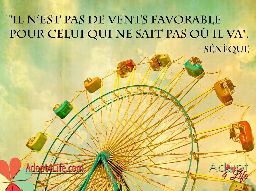 Facebook_AdoptionQuote_French_028_Dec2014_png.png