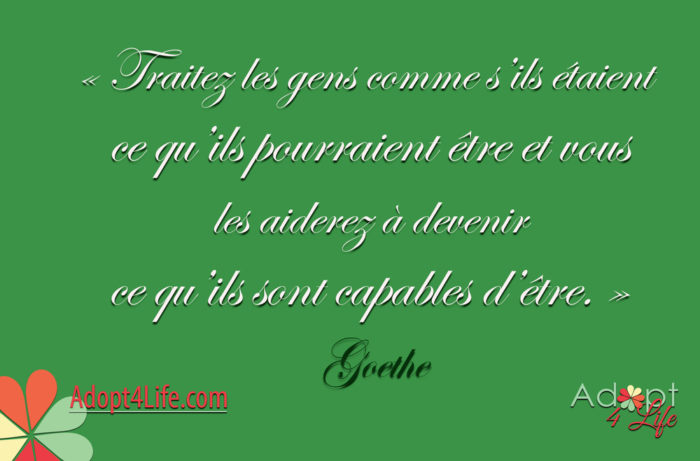 Facebook_AdoptionQuote_French_031_Dec2014_png.png