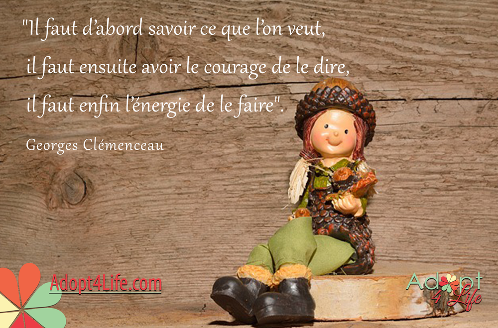 Facebook_AdoptionQuote_French_036_Dec2014_png.png