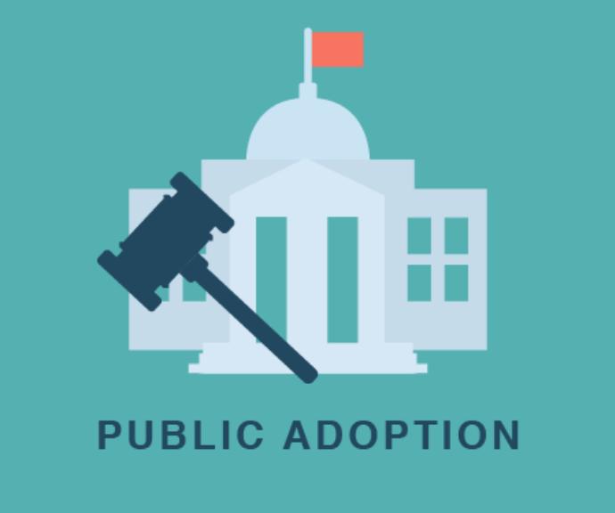public_adoption.png
