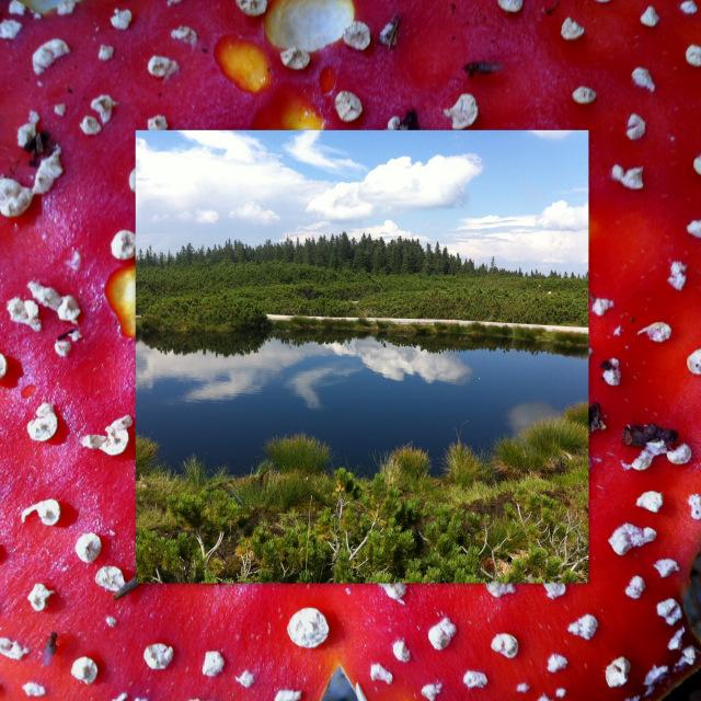 Lovrenška jezera - Lovrenc lakes