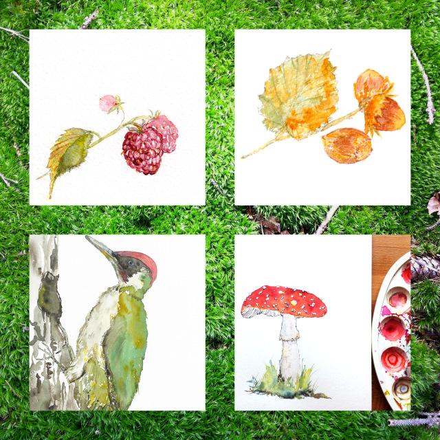 Rubus idaeus / Picus viridis / Corylus avellana / Amanita muscaria