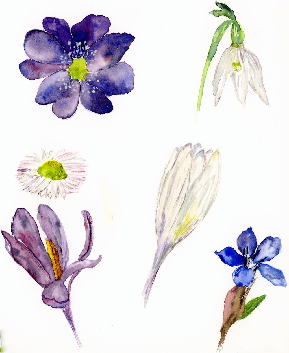 pomlad008.jpg