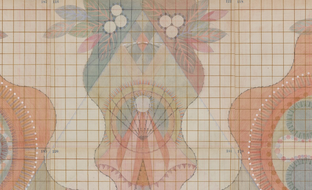 DETAIL of  Embryo, Colored Pencil and Graphite on Antique Ledger Book Pages. 54 1/2 x 50 1/2