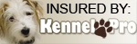Insured By KP.jpg