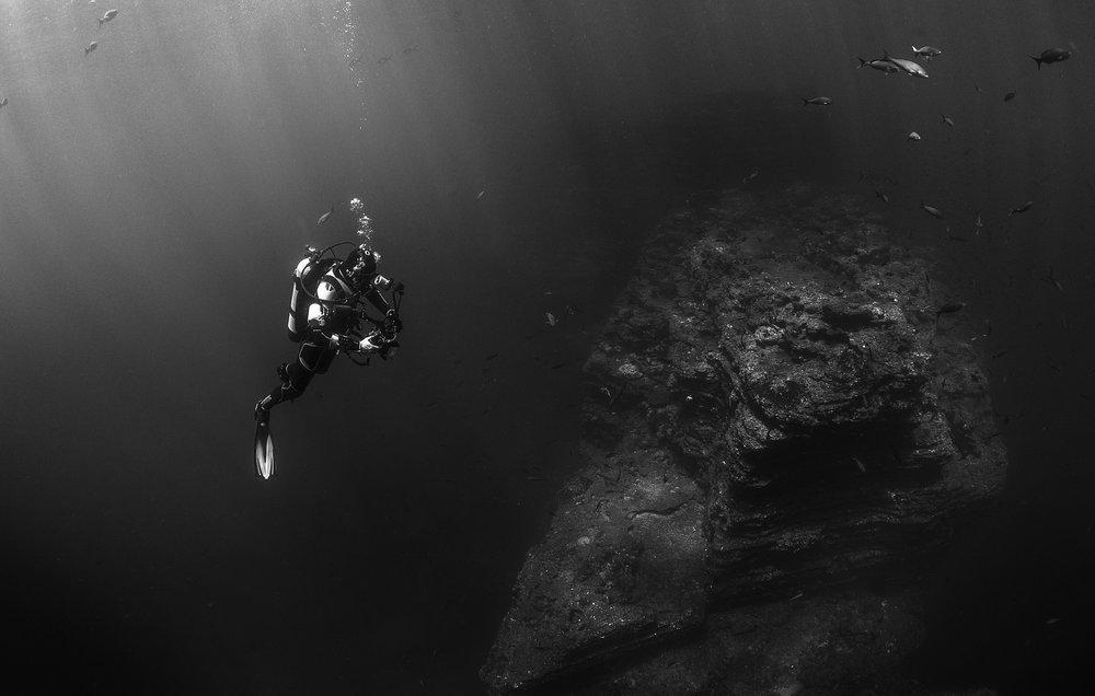 scuba-diver-569333_1920.jpg