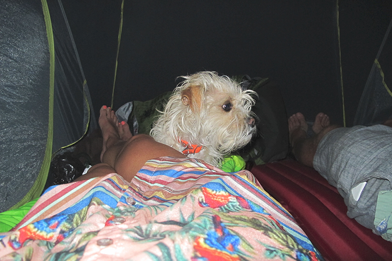 We left the rainfly off to sleep under the stars but pitched the tent to deny the aggressive swarm of summer mosquitos.