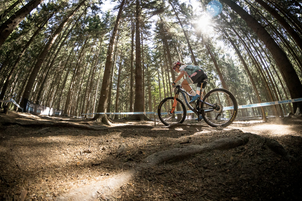 The forest in Nove Mesto feels magical. My legs did not. 📷: Matt DeLorme
