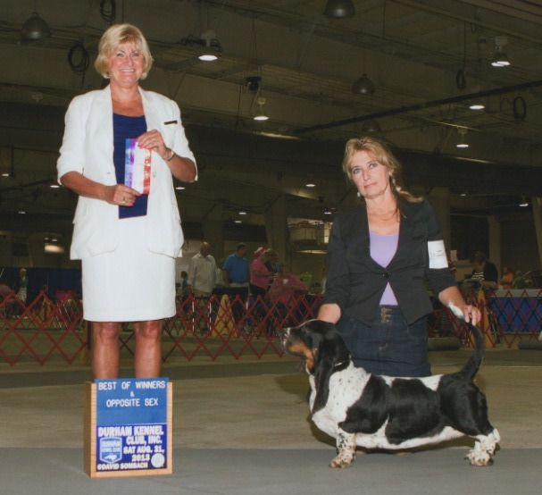 Corkey's Meadow of Love takes Best of Winners and Best of Opposite Sex at the Durham Kennel Dog Show, Raleigh, NC.