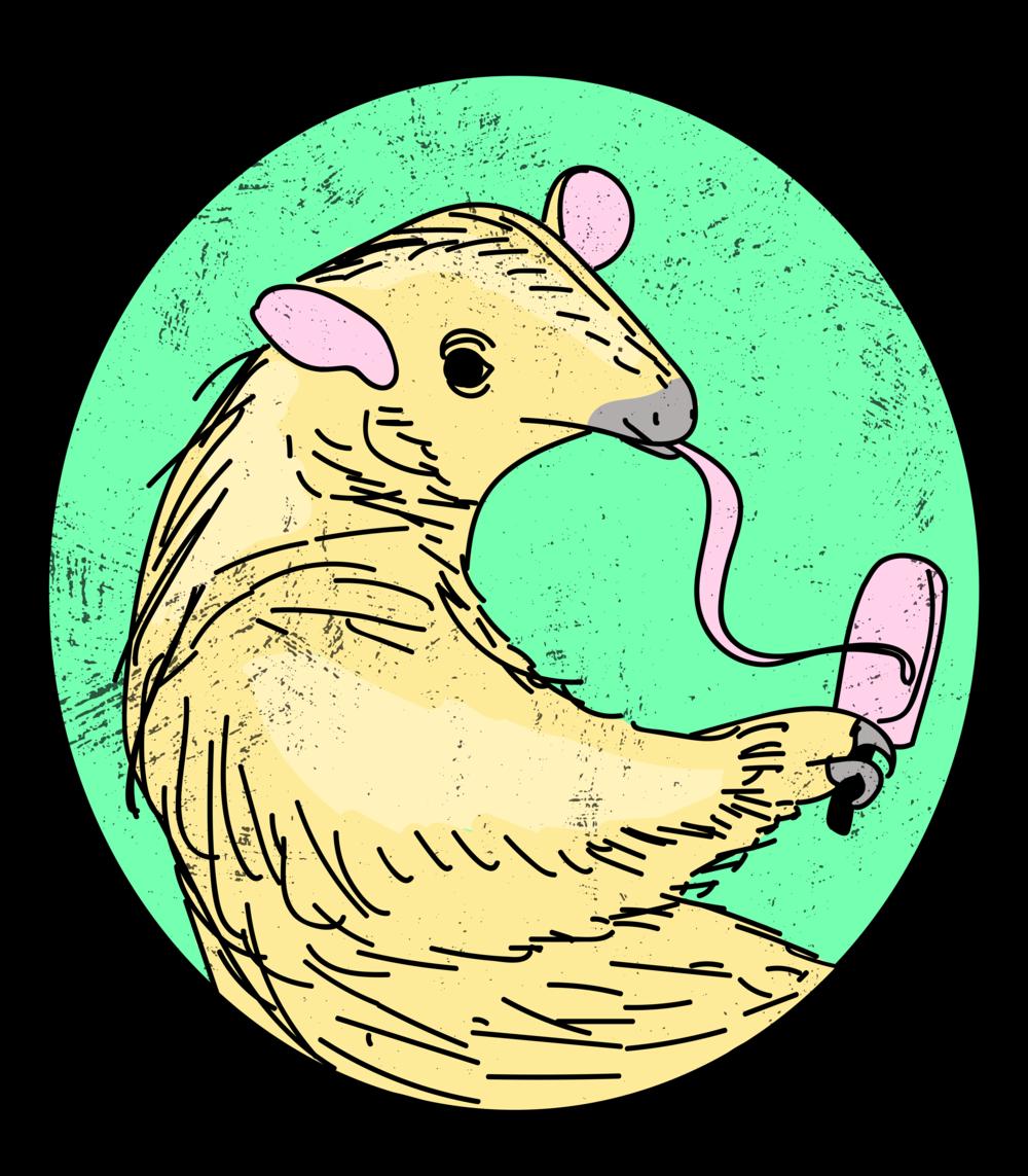 anteater-popsicle