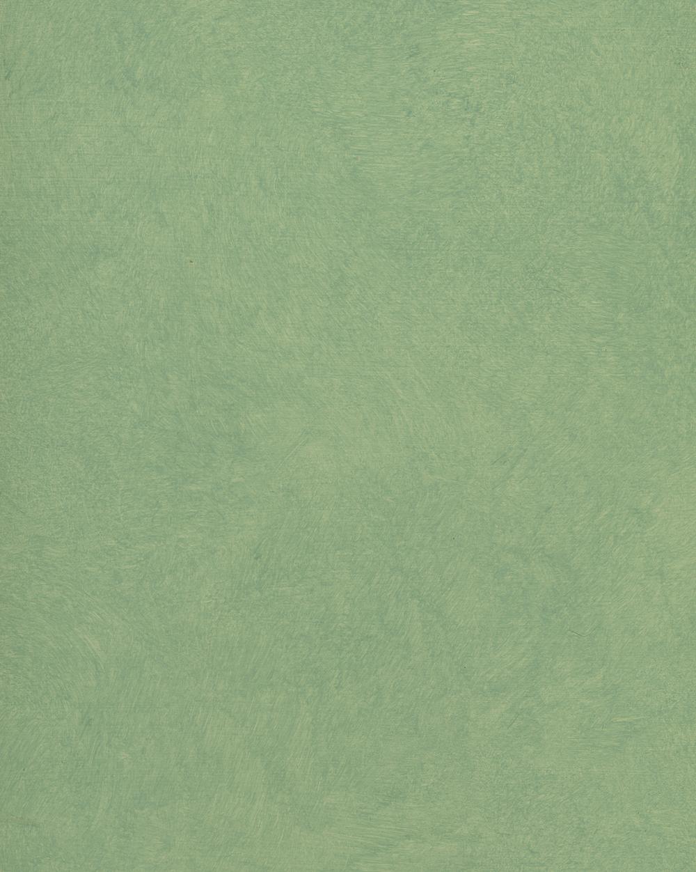 Turquoise Ragging