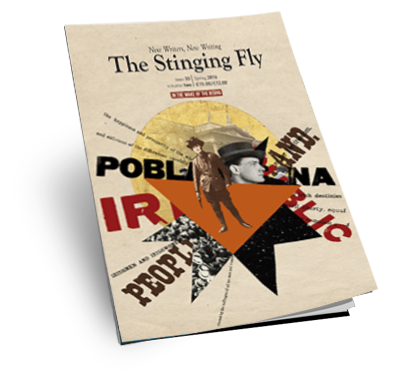 "The Irish Times describes the  Stinging Fly  as""A visceral collection of pieces by modern Irish writers depicts another side of 1916"".    Read the full review  here ."