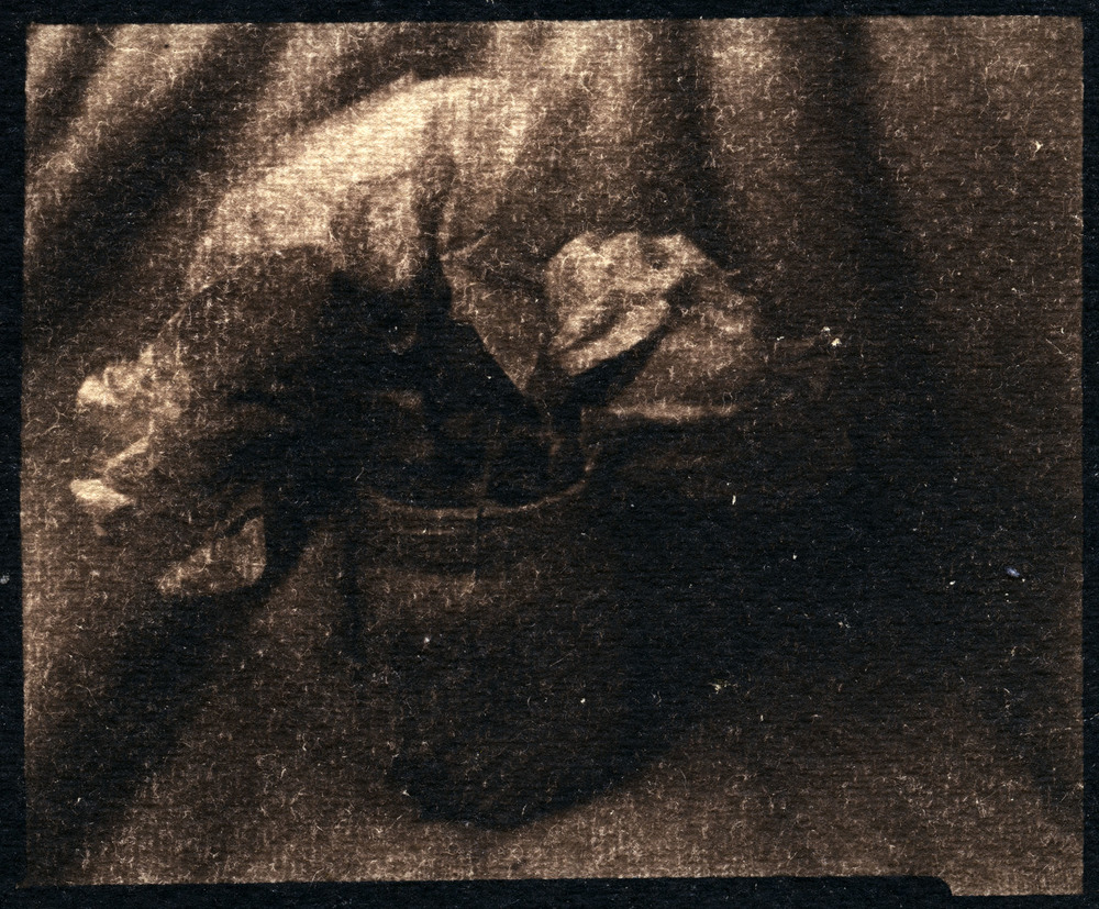 Paper Flowers For Mom    Toned Cyanotype, 2015