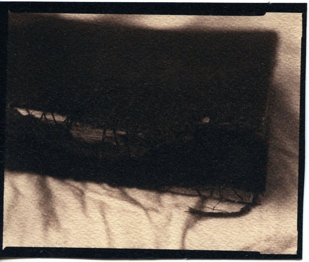 Great Grandfather's Torah    Toned Cyanotype, 2015