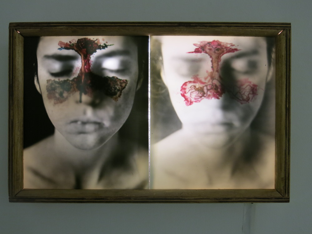 Sinus Defect    Wood, Silver Gelatin Prints, Plexiglass with Gouache paint, hair, and needles
