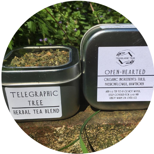 telegraphic-tree-medicinal-tea.png
