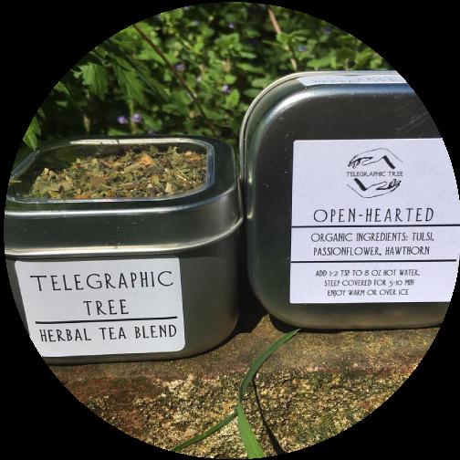 telegraphic-tree-medicinal-tea.png