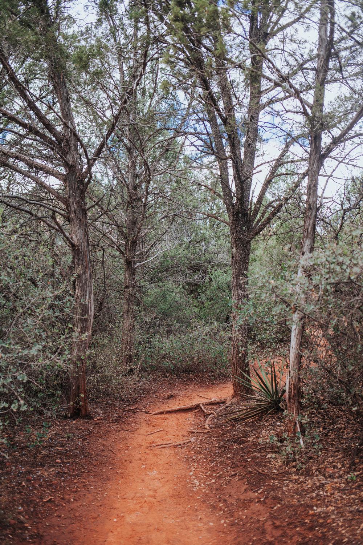 meganlendmanphotography_explore_2018-arizona-10.jpg