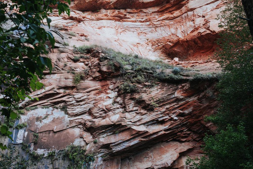 meganlendmanphotography_explore_2018-arizona-38.jpg