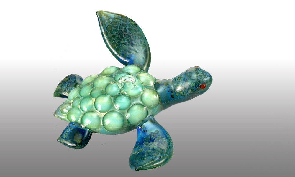 agua-chameleon.jpg