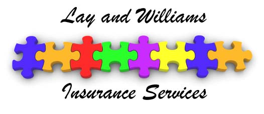 Lay and Williams Puzzle Logo 2x1.jpg