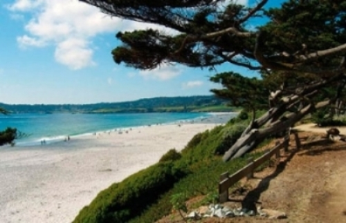 1_Ocean Beach, Carmel, from trail.jpg