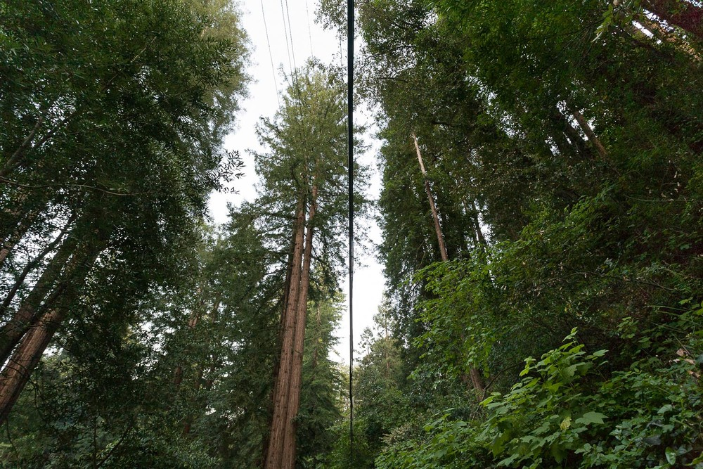 004_Powerlines_I_7646.jpg