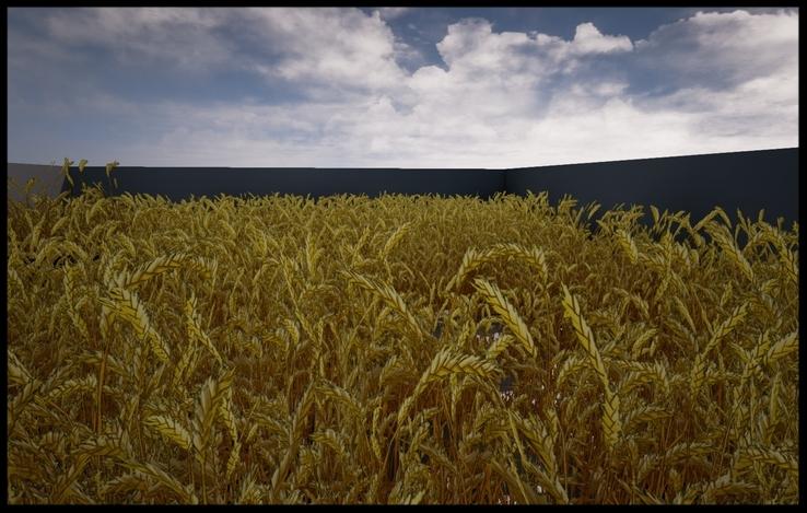 UE4+Foliage+Wheatfield.jpg