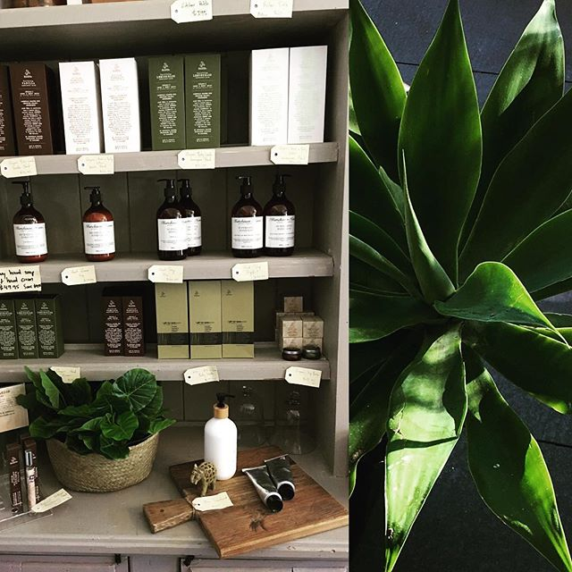 What a glorious Saturday. The sun is out and everything is looking fresh. Pop in and try the new organic hand & body wash and lotions #saturdaybliss #organicskincare #freshface #freshlook #pamperyourself #baysidebusiness #timetorelax