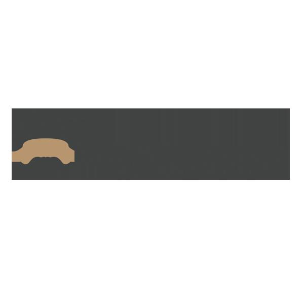 Mr. Cardboard