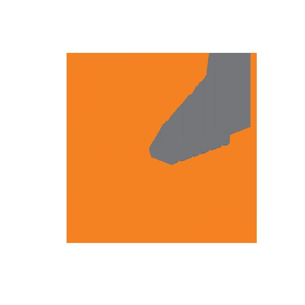 Virsix