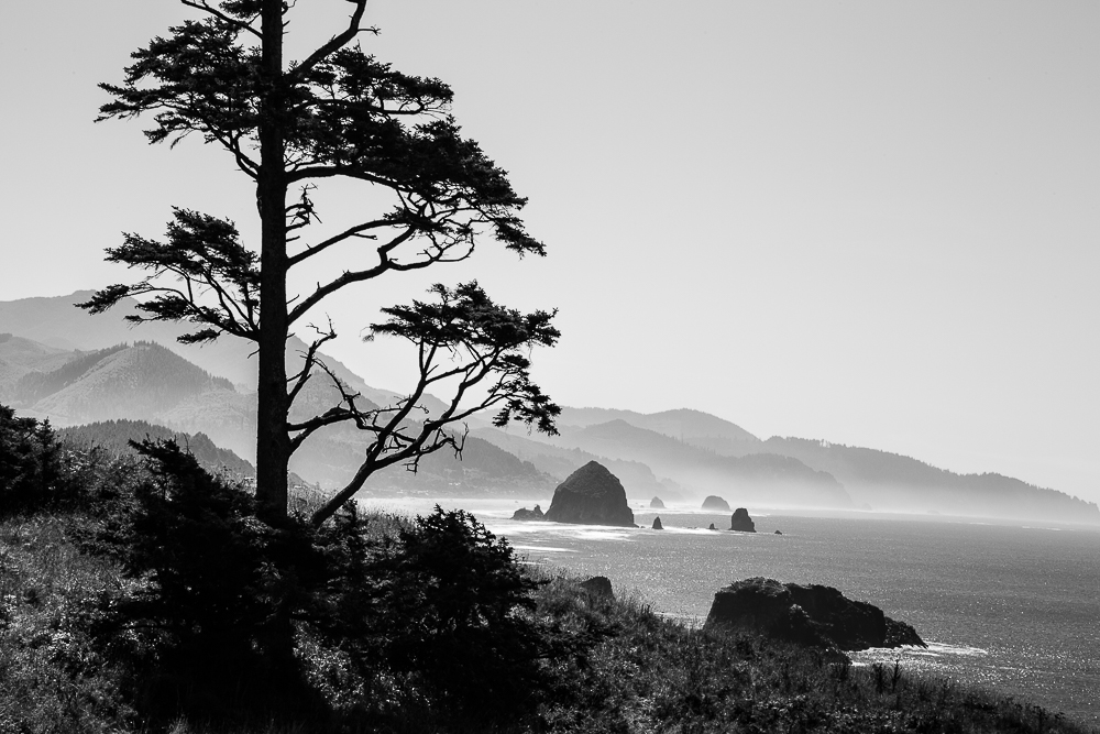 View from Ecola
