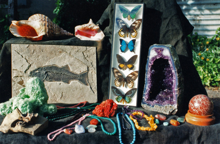 For worldwide minerals, fossils, shells and other natural history