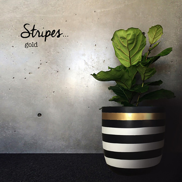 STRIPES GOLD // From $139