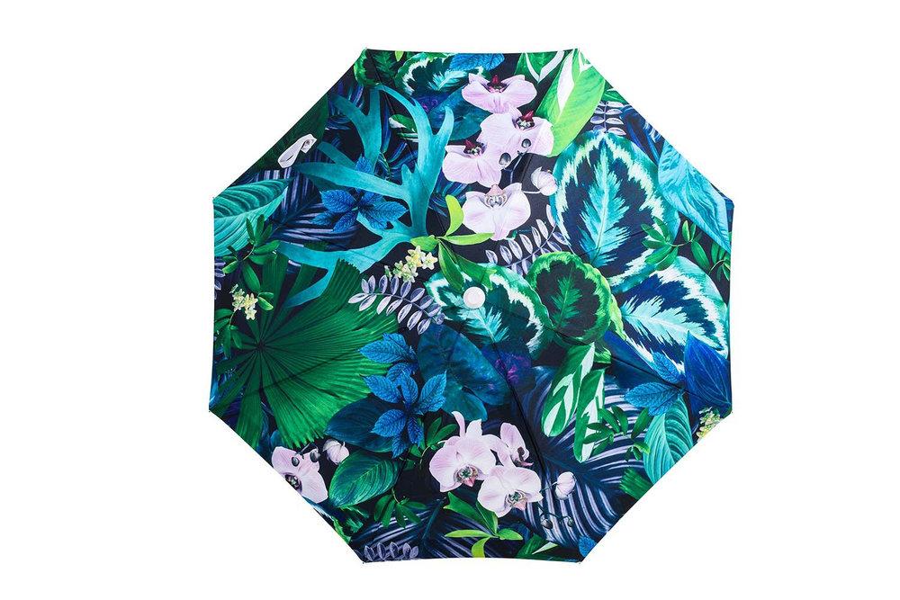 BasilBangs-Umbrella-Botanica-2.jpg