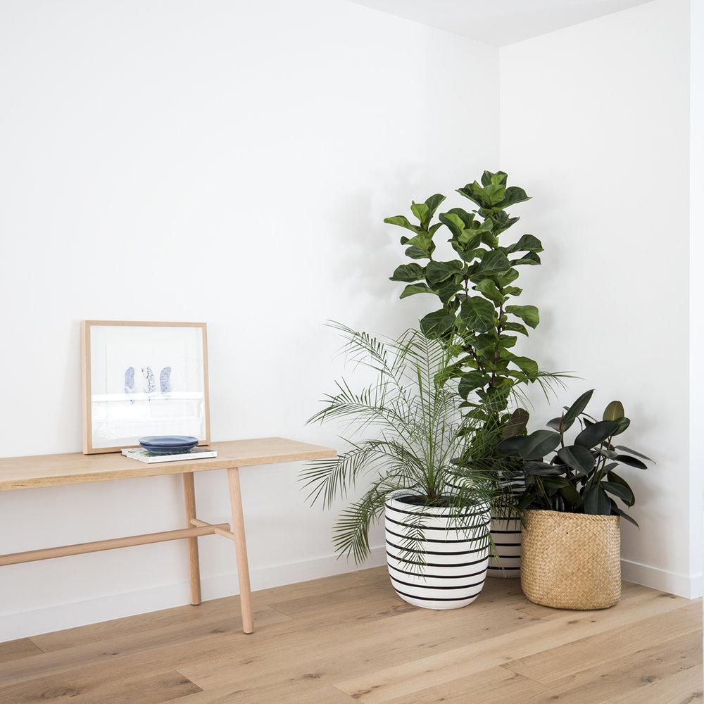 Kira and Kira - Gold Coast Property Styling - Home Interiors - Furniture DesignIMG_6761 - small.jpg
