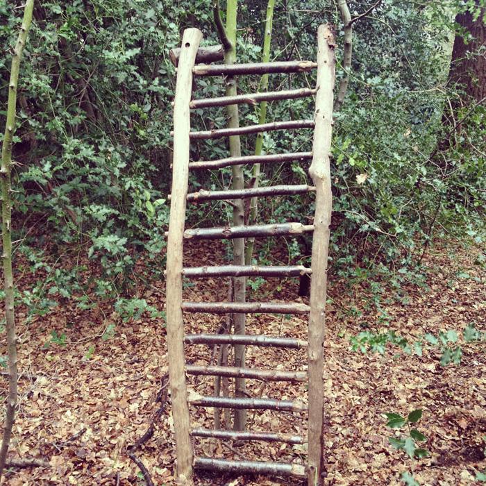 the ladder.jpg