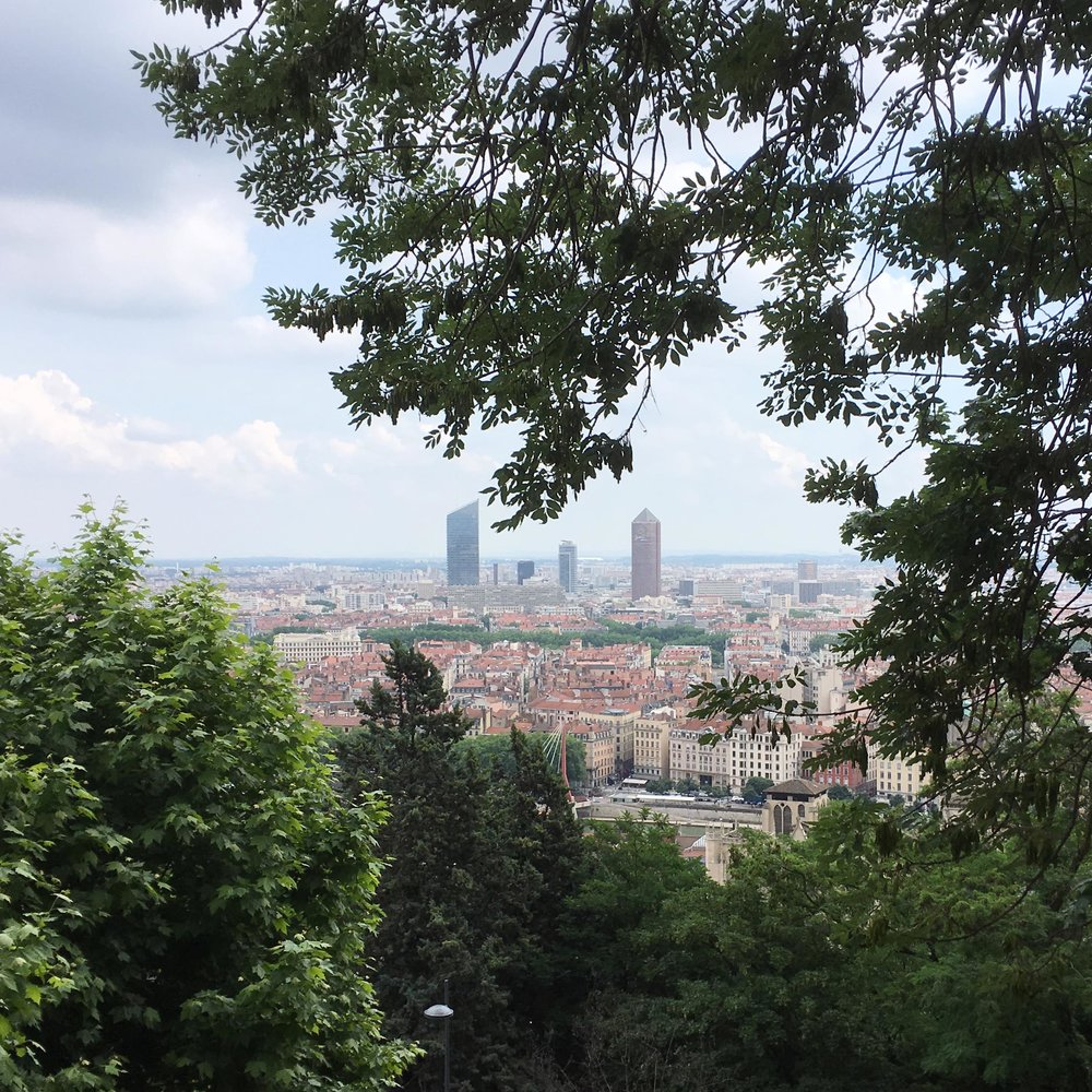 view of lyon france.jpg