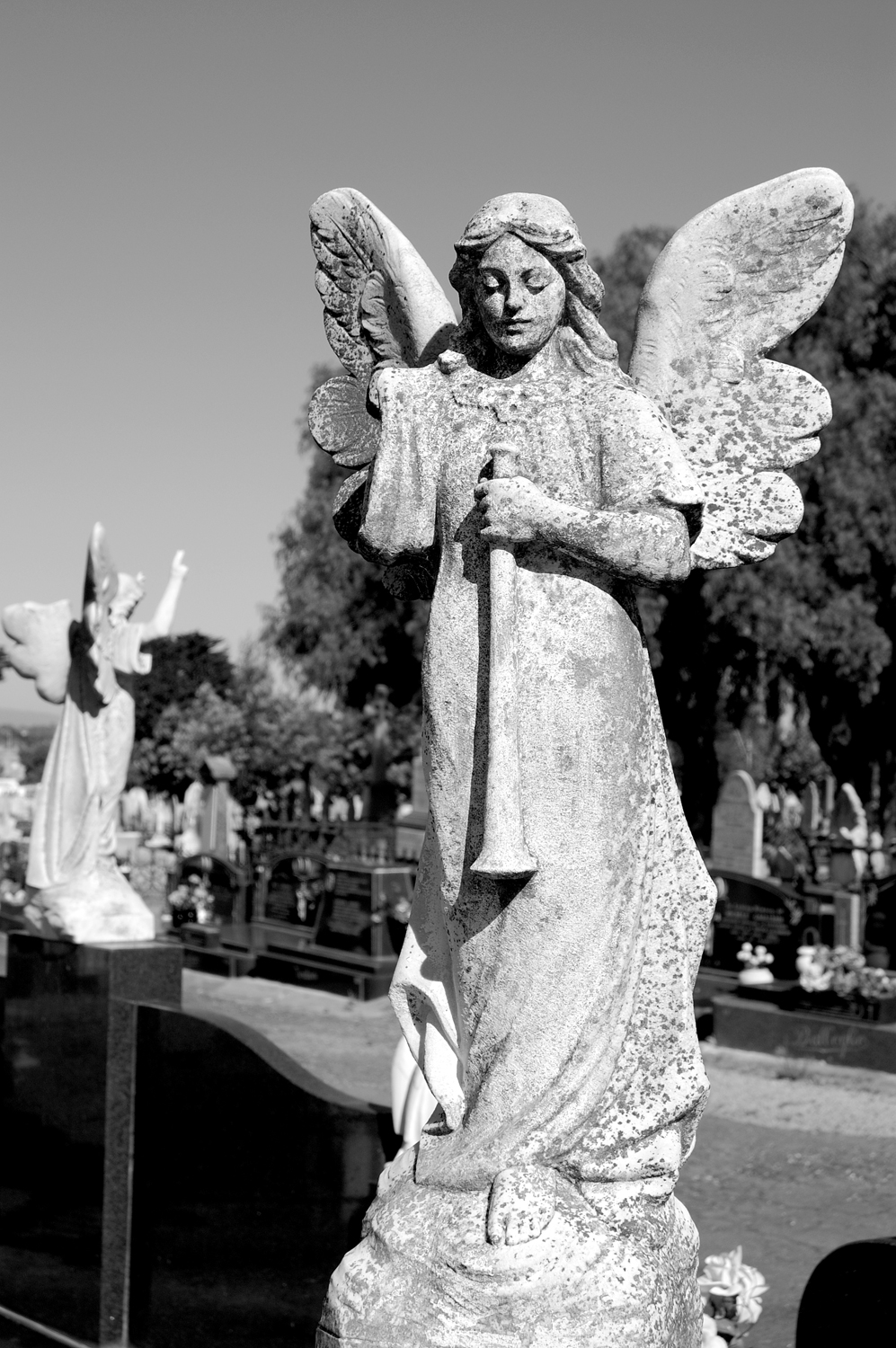 untitled #53  [melbourne general cemetery, parkville, victoria, australia, 2005]