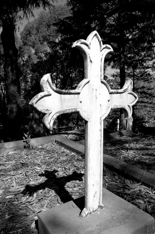 untitled #146 [napier cemetery, napier, hawke's bay, new zealand, 2005]