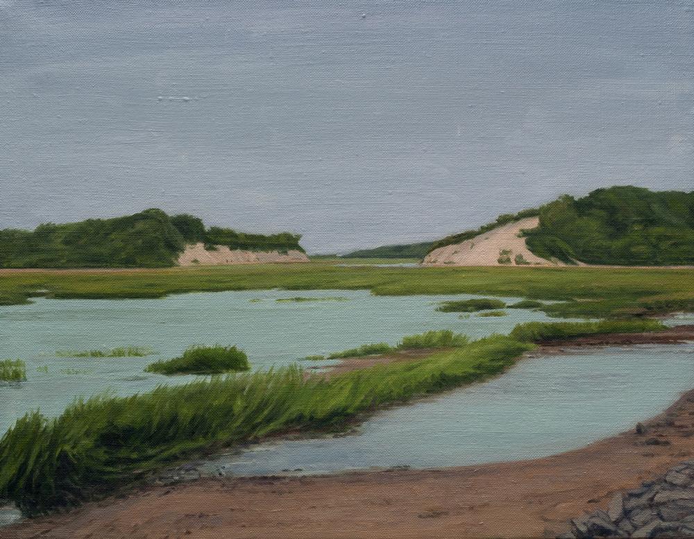 Provincetown Marsh