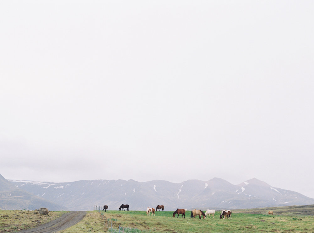 icelandblog-37.jpg
