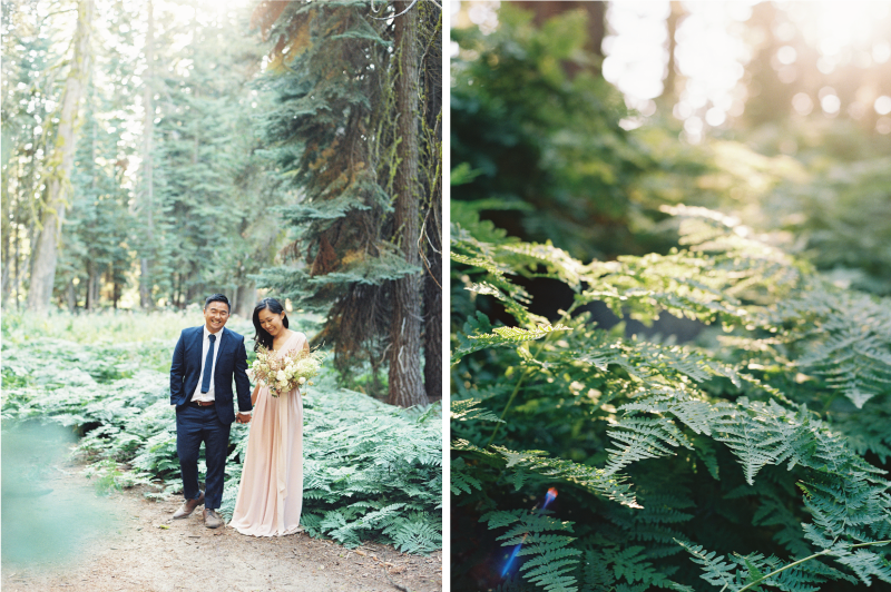 Meiwen Wang Photography-Yosemite Engagement 31.png