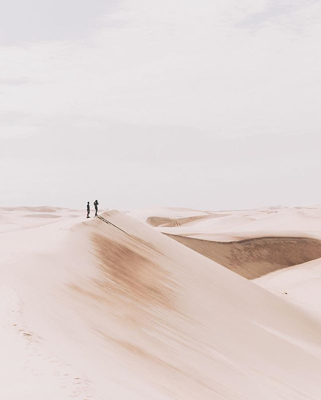"Throwback to wandering through the Namib desert in Africa, Namibia with these cool chaps @jeremyconte and @alx.newman . This week we celebrate Samoan language week and today is Samoan Independence Day. Today has me reflecting upon how my language skills in Samoan is likened to that of a new born baby, in short that means I can't speak Samoan at all, hah. . Regardless, I am proud of my heritage and am proud of the roots my parents, grandparents and great grandparents have instilled in me. . I remember there was a time when I would shy away from my last name due to its complexities. When I was thinking of a Instagram handle I told myself ""Shalamah.Tautaiolefue is way too long!"" And later that week I was talking to a friend who said ""Lamah, you make them LEARN and REMEMBER your name."" I felt so incredibly stupid for thinking otherwise and have since used it as a way to create conversations with other people. . I am grateful for the Samoan culture which centres around families. To me, family exceeds blood, race and gender and I have been blessed to be surrounded by the best people. . I'm not the best example of a Samoan, but I'm proud to be Samoan nonetheless. . E so'o le fau i le fau ❤️ .  Happy Independence Day! 🇼🇸 #Namibianewlife #Swakopmund #Namibdesert #Namibia #Africa"