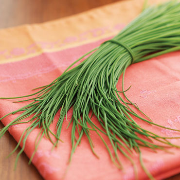 Chives -Chives! Among the first gifts of Spring. Add an onion-y accent to your omelettes, dressings & sauces. $4/2 oz bag.
