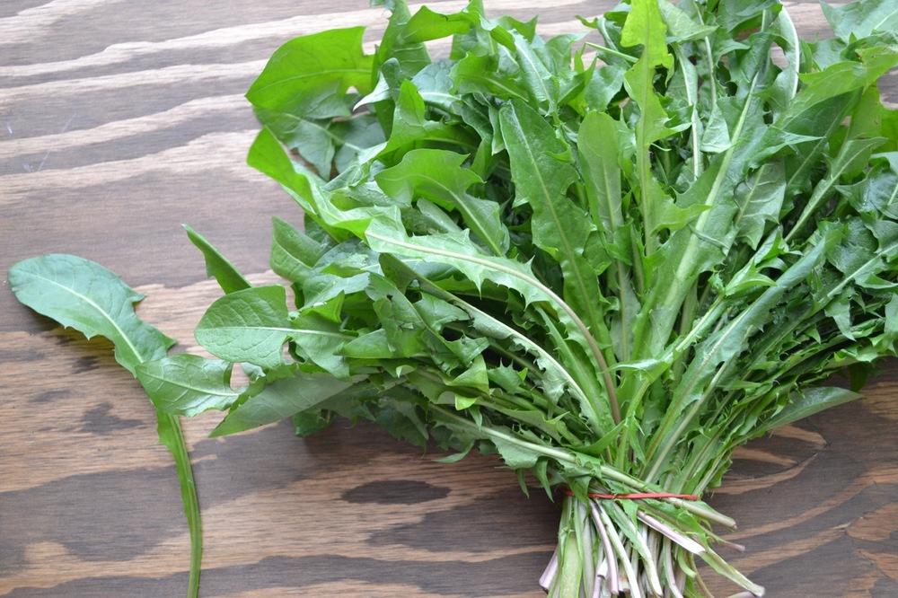 Dandelion Greens -Delicious bitter spring greens! Great sautéed with tahini & lemon. 8 oz bag